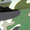 Green Camo Kart